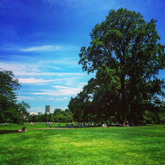 【都内の癒しスポット】東京で自然にふれあえるおすすめ公園特集